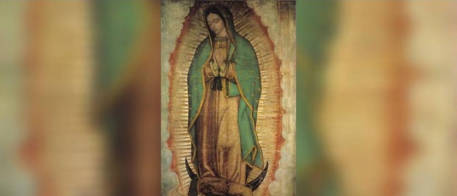 Provincia Latinoamericana de Lengua Española pasará a llamarse Nuestra Señora de Guadalupe
